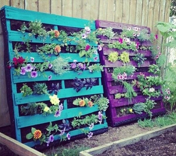 Outdoor Garden with pallets